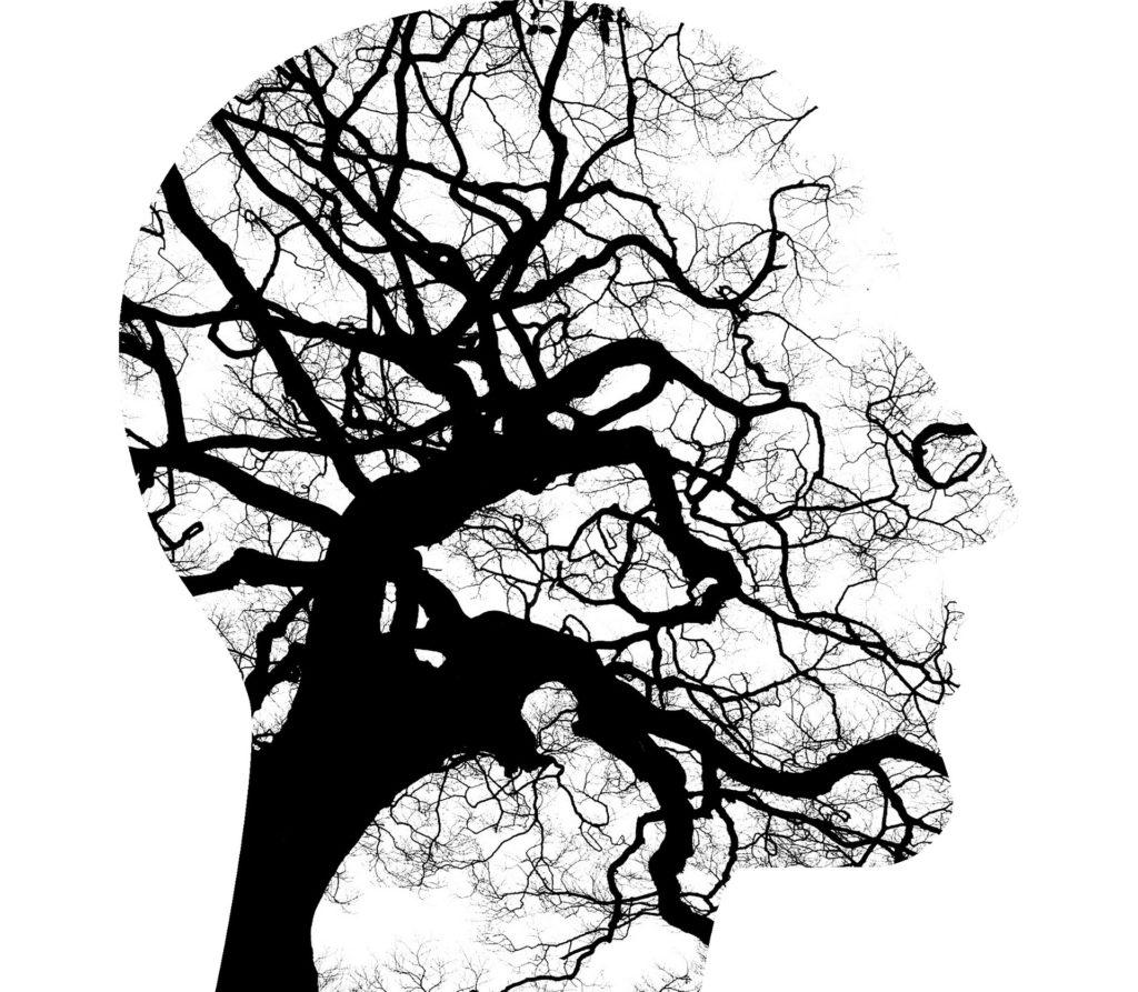 mental-health-2313430_1920
